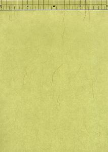 楮いぐさ紙 緑