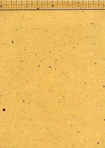 楮皮入り紙 厚口 黄
