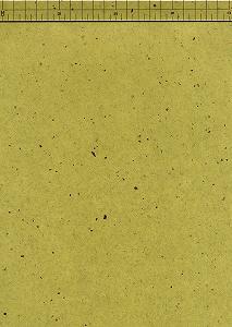 楮皮入り紙 厚口 緑